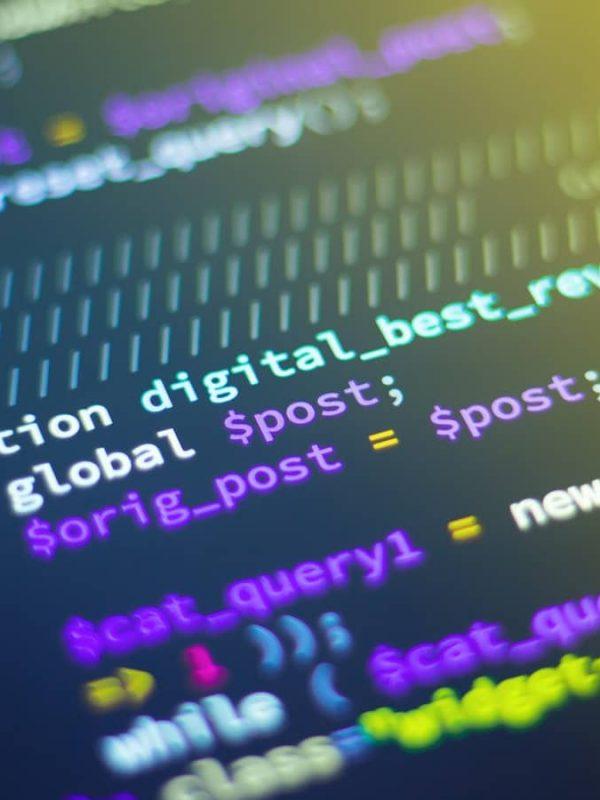 Entretien d'embauche chez DL Software